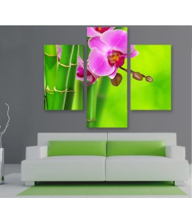 Multi-canvas 3x Bamboo orchid